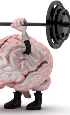 Your Brain on Exercise!